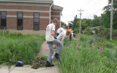 Conservation Corps Helps With Milaca Library Rain Garden Maintenance