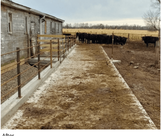 Livestock Water Quality Finished Project – Heavy Use Area